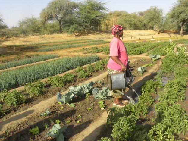 kvinde vander sin mark
